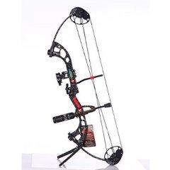 弓箭专卖对比(四):现代复合弓分类对比