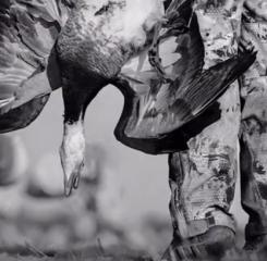 【超清】疯狂的狩猎视频,非弓箭