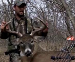 【射猎】34分钟超清复合弓猎鹿全程