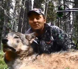 【射猎】复合弓全程猎狼视频