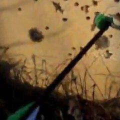 【自拍】三角复合弓30米打红茶瓶盖