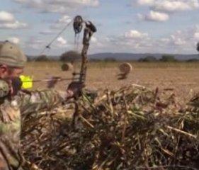 【射猎】最新的复合弓猎鸟视频